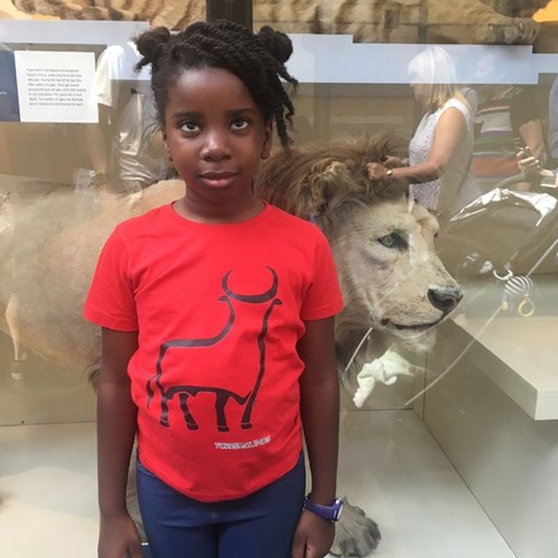 discover the natural history museum with children