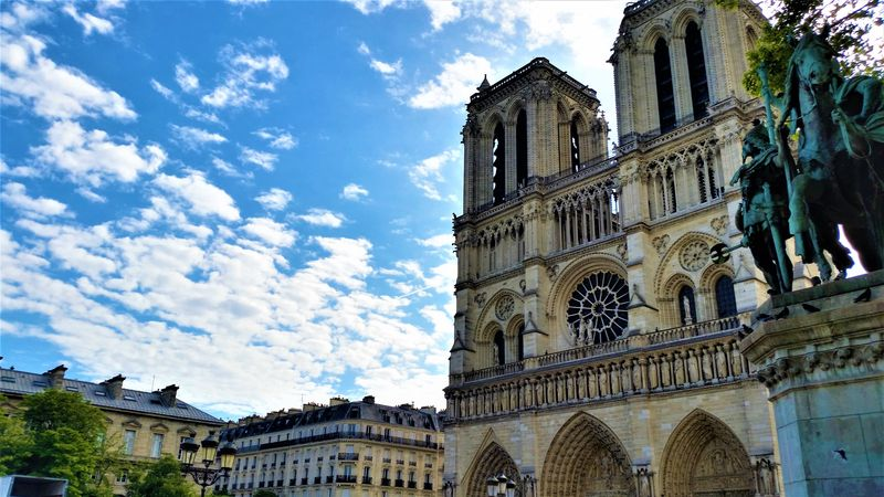 discover notre dame cathedral with experienced guide